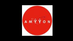 Amyyon CRM